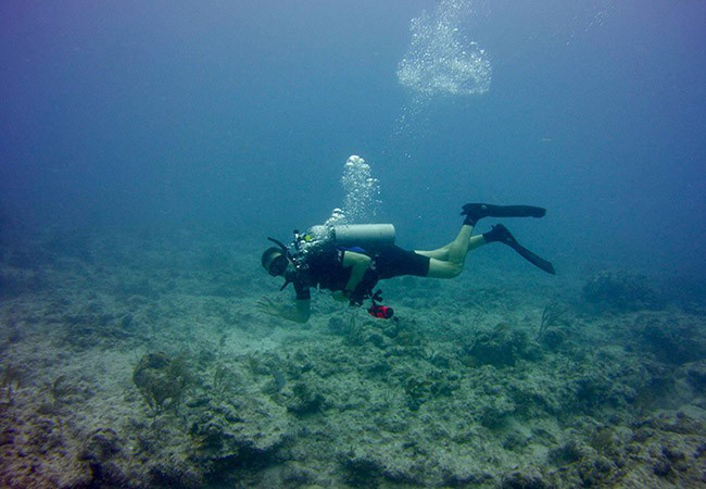 General tips for Scuba Diving