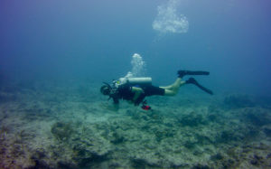 Dive solo: Open water diver course in Goa