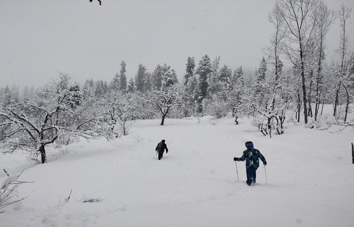 Snowboarding in Solang, Manali