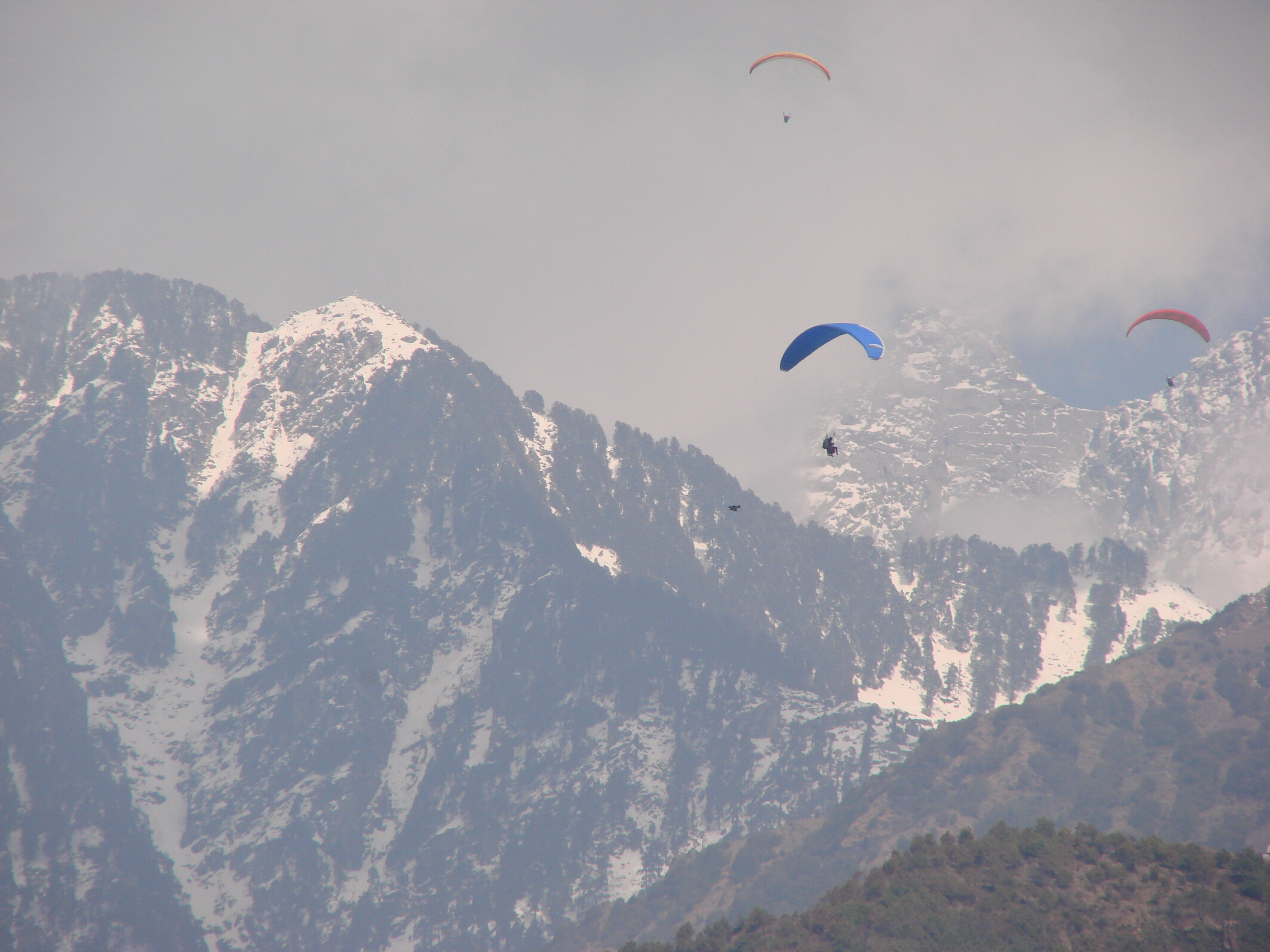 Solo Paragliding course (P1and P2) at Bir billing