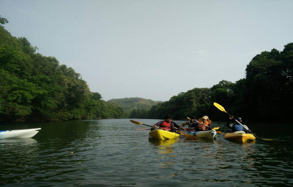 Shambavi River Kayak Tour
